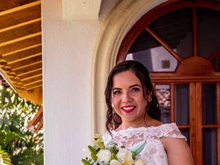 Vallarta Pictures 4