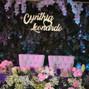 La boda de Cynthia Nicolás y MC Eventos 6