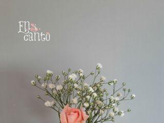 Encanto Floral 4