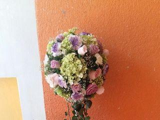 Florerías Passionaria 3