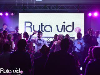 Ruta Vid Band 5