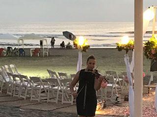 Acapulco String Quartet 3