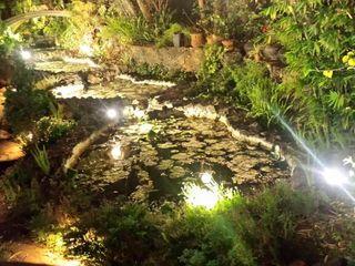Jardín de Los Olivos 6