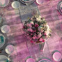 La boda de Karla Lopez y Zibatá Jardín 17
