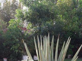 Jardín del Rocío 5