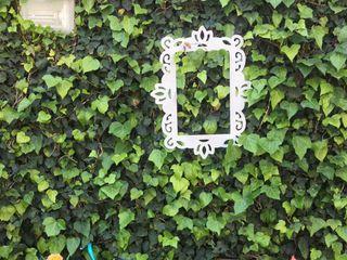 Jardín Alejandra 5