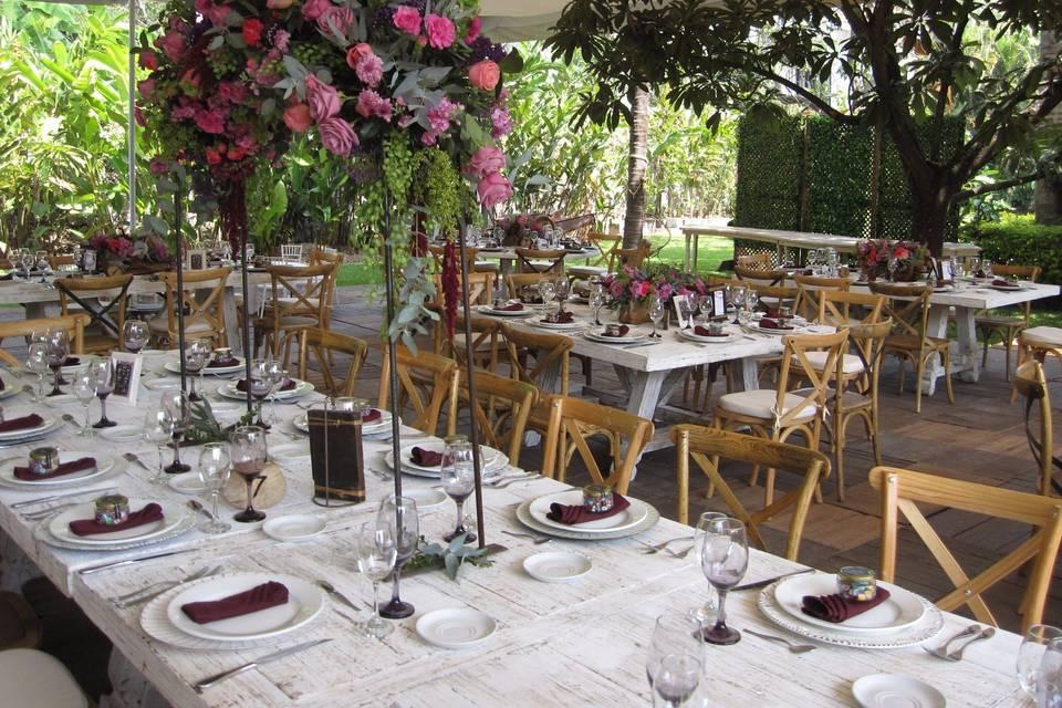 Hadaz Wedding Planners 6