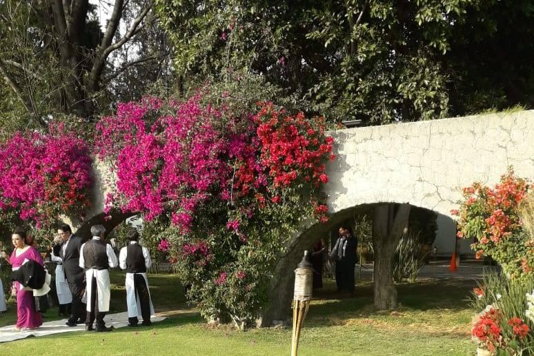 Hacienda San José Actipan 20