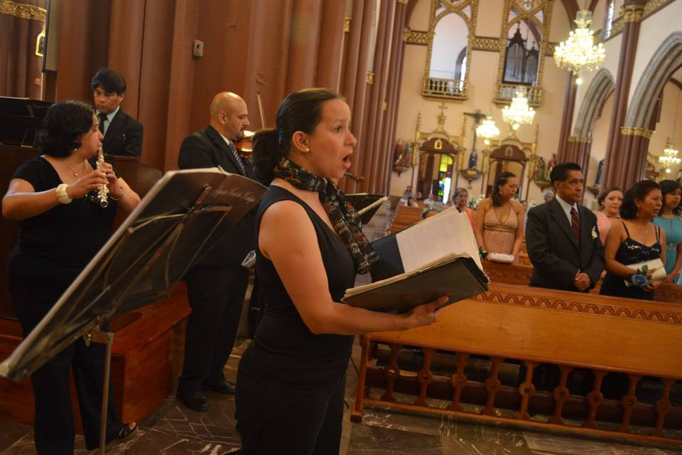 Orquesta Real de Xalapa 11