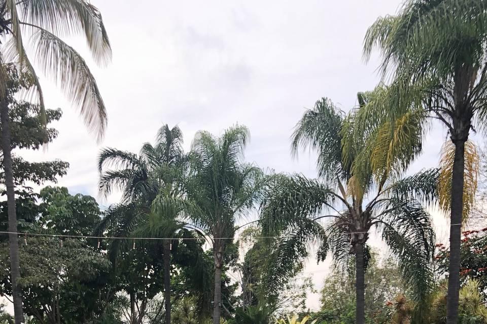 Jardín Ramayana 22