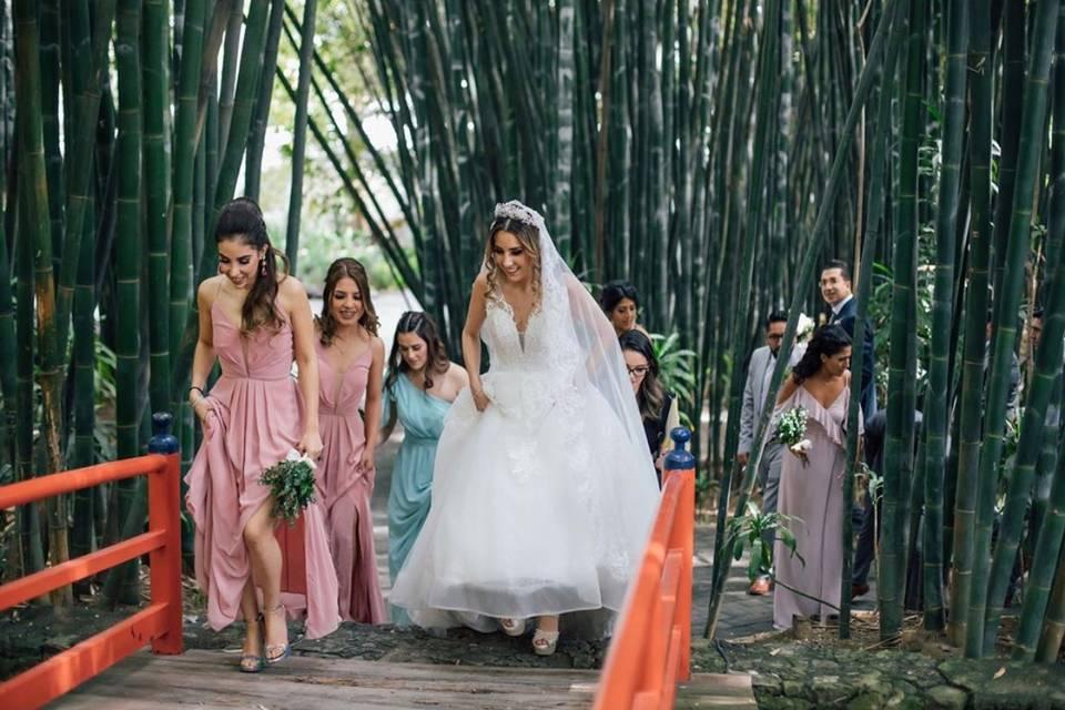 Bridesmaids Collection 1