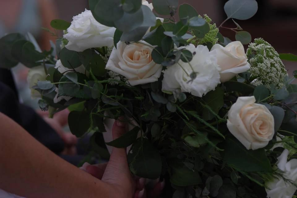 Florería Acacia 20