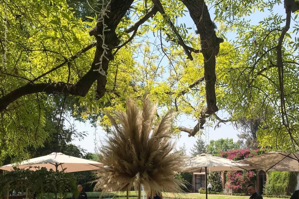 Hacienda Amazcala 4