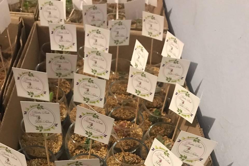Vinde - Plantas y Artesanías 15