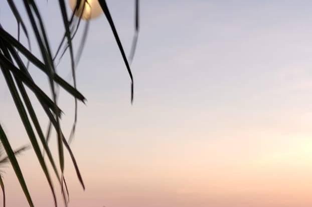 Riu Emerald Bay 5