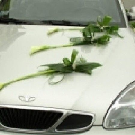 decoracion de auto