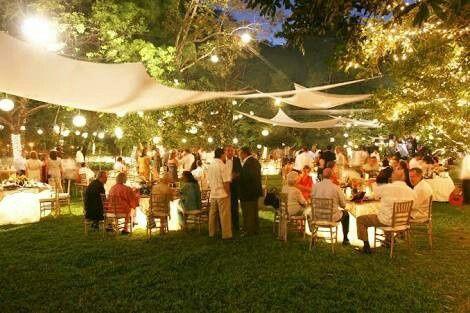 alguna conoce un lugar lleno de rboles para una boda