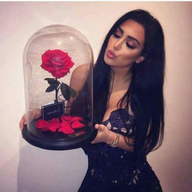 cuanto dura una rosa encapsulada en agua