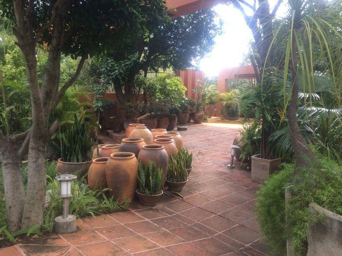 Boda de dia o de noche jardin o hacienda foro for Boda en un jardin de noche