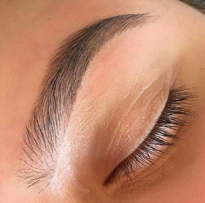Maquillaje :las cejas perfectas 14