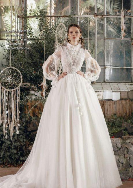 Vestidos colección 2022 Passion by Ariamo Fashion 4