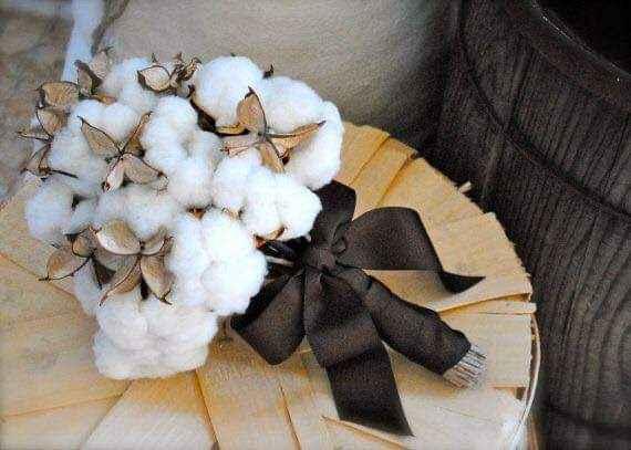 Segundo aniversario: bodas de algodón 7