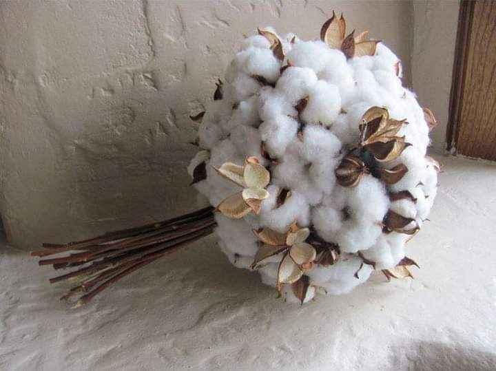 Segundo aniversario: bodas de algodón - 8