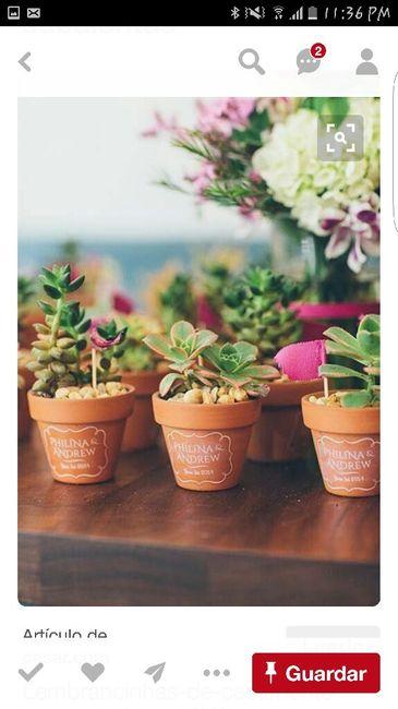 Donde venden suculentas foro organizar una boda bodas for Donde venden plantas baratas