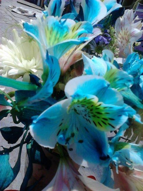 Flores Azules Naturales Foro Nuevo Leon Bodas Com Mx