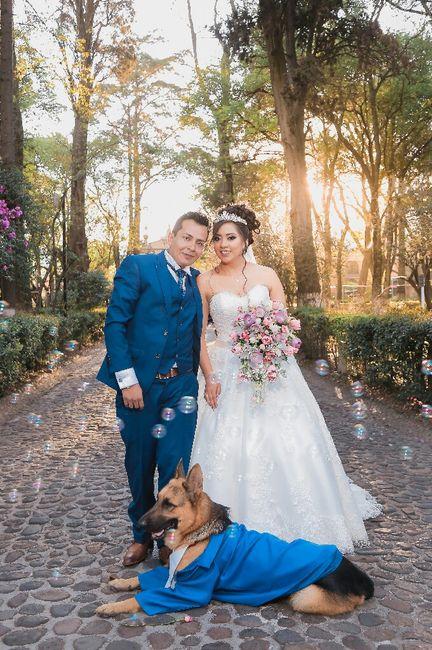 Comparte la foto favorita de tu boda 14