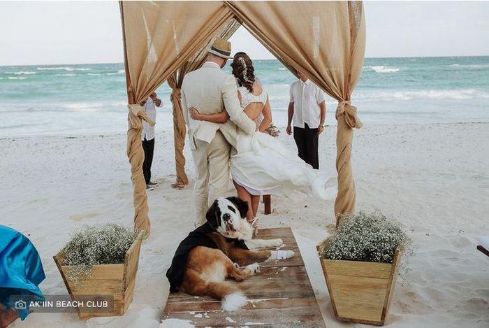 Confiesa: ¿en algún momento has pensado que tu pareja no hace nada de la boda? 1