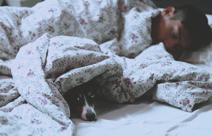 ¿Quién es más dormilón?👞👠 1