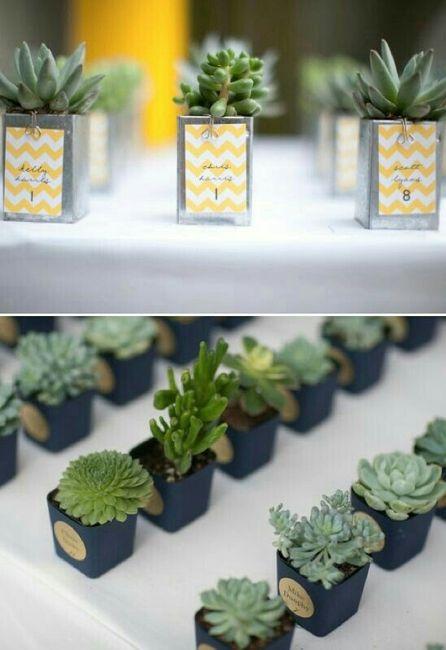 Suculentas y cactus para recuerdos de boda - 2