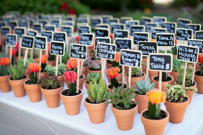 Suculentas y cactus para recuerdos de boda - 9