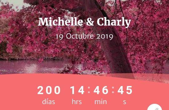 Novios que nos casamos el 19 de Octubre de 2019 en Distrito Federal 1