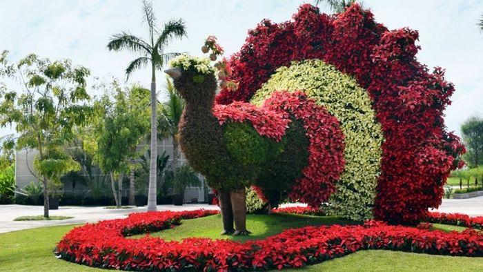 Jardines de mexico fotos morelos comunidad for Jardines grandes