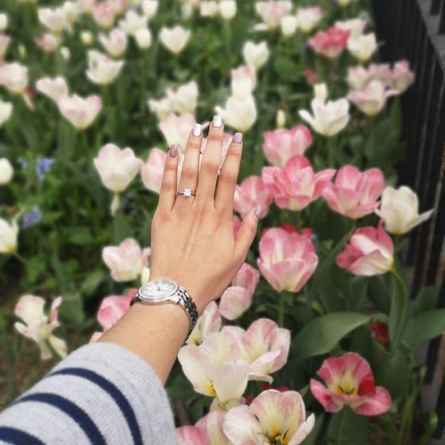 Muestren sus anillos chicas!! 4