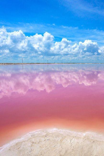 Playa para el mes rosa 🎗️ 2