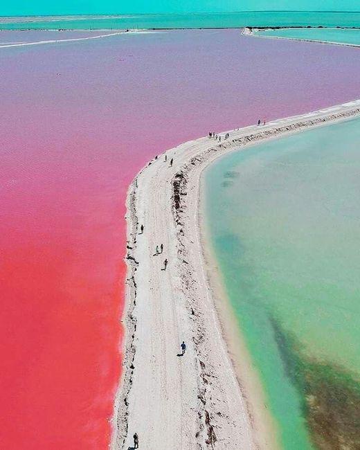 Playa para el mes rosa 🎗️ 4