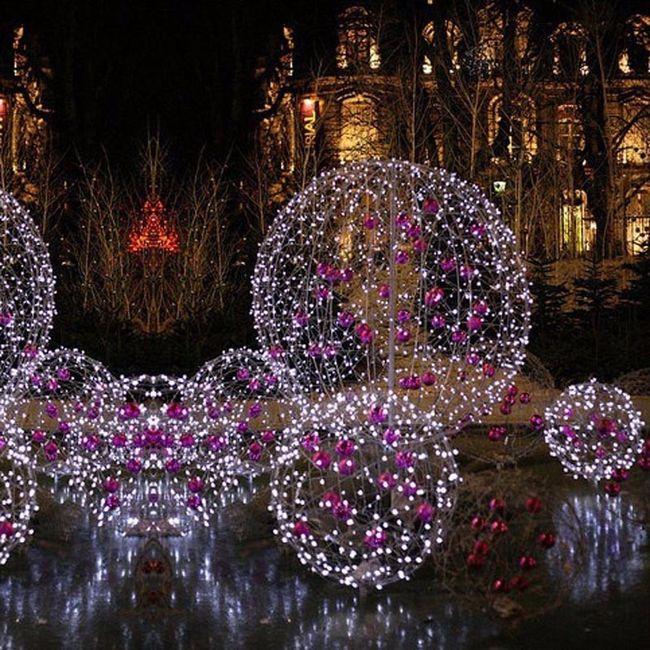 Decoracion para boda ayuda foro manualidades para - Luces navidad exterior ...
