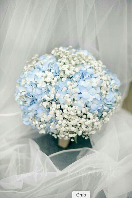 Hydrangea And Babys Breath Bouquet