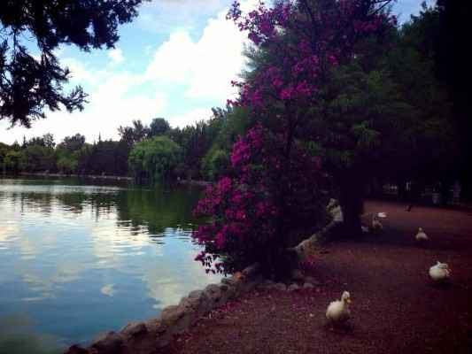 Laguna de San Baltazar