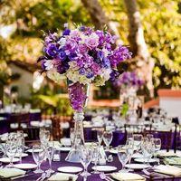 Banquete violeta