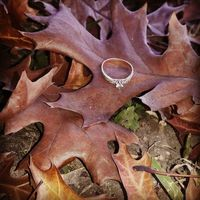 Mi sorpresa romántica Coral 💖 - 1