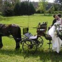 Como hacer que mi boda se vea Mexicana - 1
