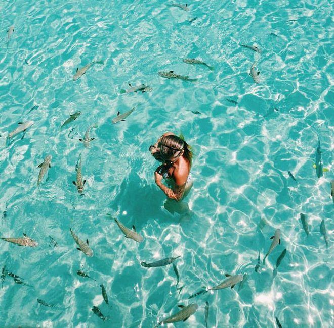 Ya tenemos luna de miel 🍯 Bora Bora 🌸 1