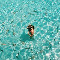 Ya tenemos luna de miel 🍯 Bora Bora 🌸 - 1