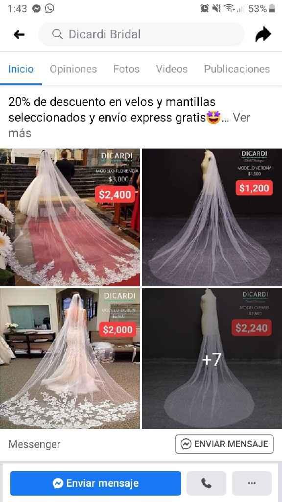 Velo de novia - 1