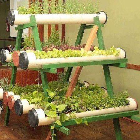 Plantas en tubos de PVC