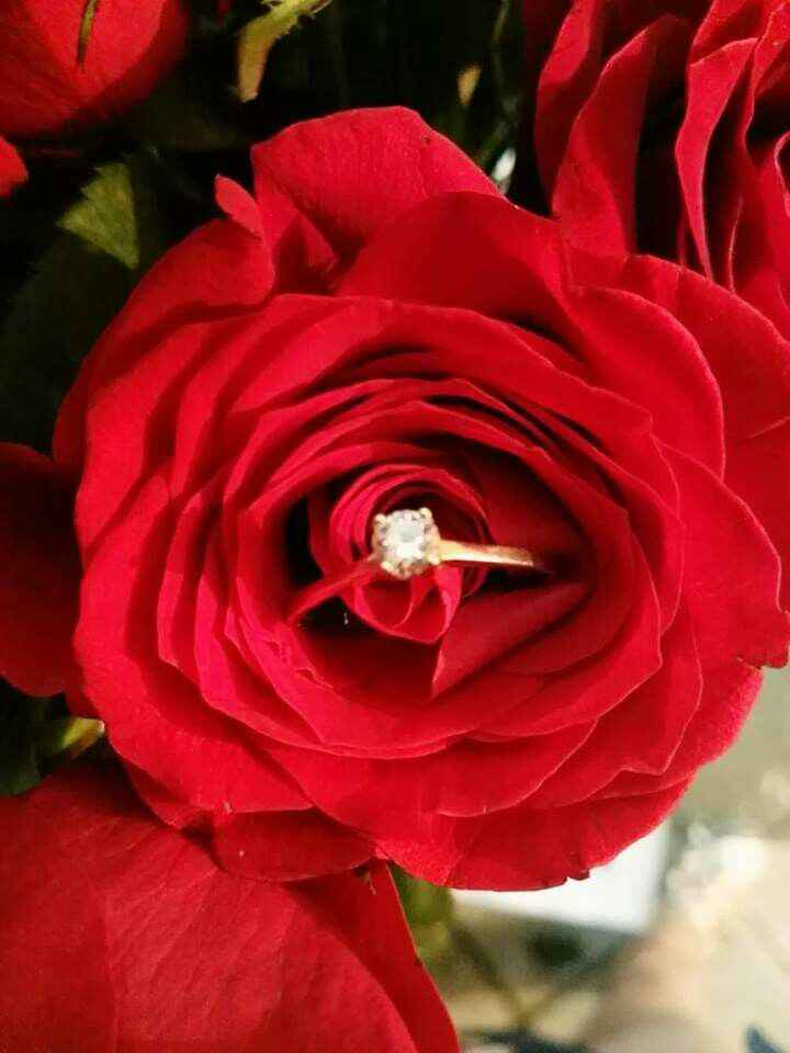 Mi sorpresa romántica Leticia Martinez Hernandez - 2